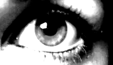 http://avale-moi.cowblog.fr/images/MyEye.jpg